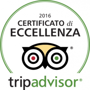 Tripadvisor Logo COE2016 It
